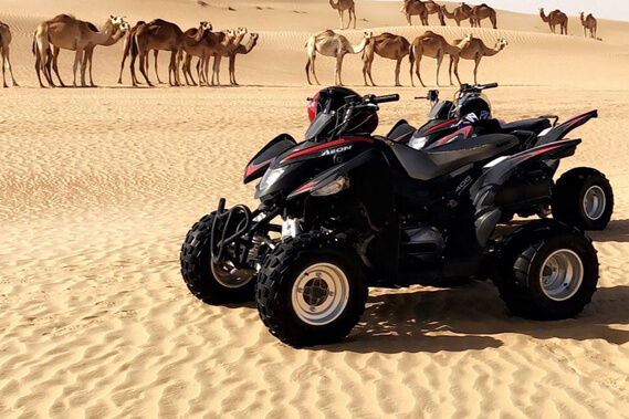 quad-bike-rental-company-locations-in-doha-qatar