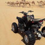 quad-biking-trip-cost-in-doha-qatar